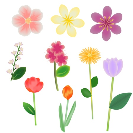 Fantasy flowers vector collection Vector