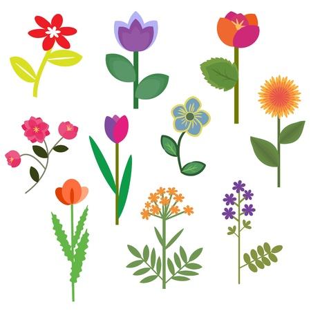 Decorative flowers set with foliage Illustration