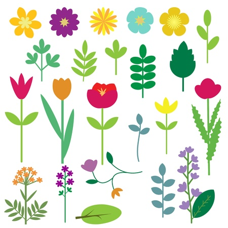 violet flower: Decorative flowers and leaves collection Illustration