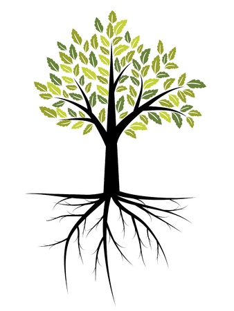leaf: Tree illustration with strong roots Illustration