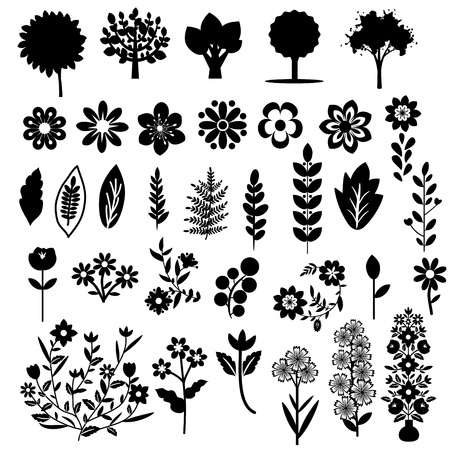 Floral set with black and white plants Vector