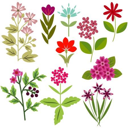 Vector flowers set different elements