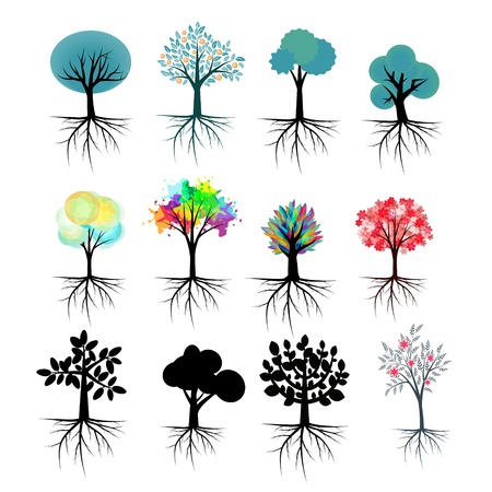Vector trees collection with roots Vector