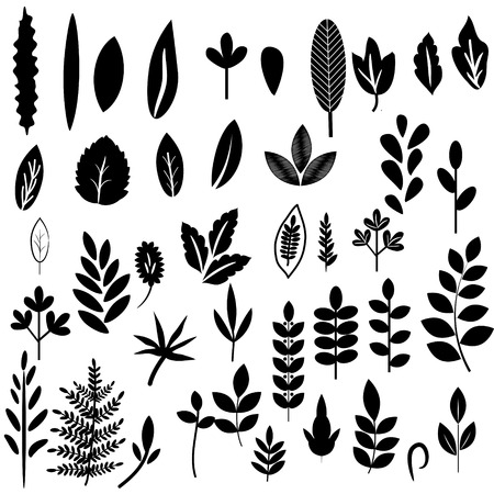 Black and white leaves set Ilustração