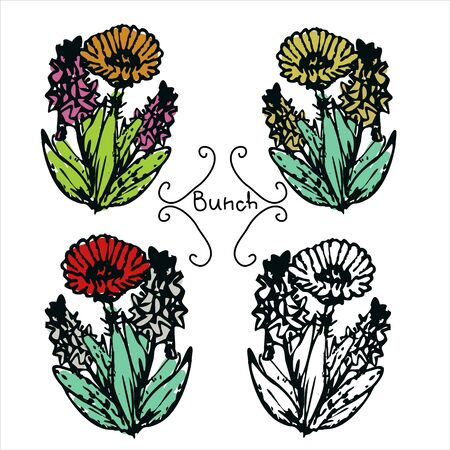 bunches: Four hand-drawn flower bunches coloured and black&white Illustration