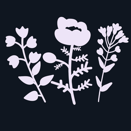 campanula: Bellflower, poppy and pennycress illustration Illustration