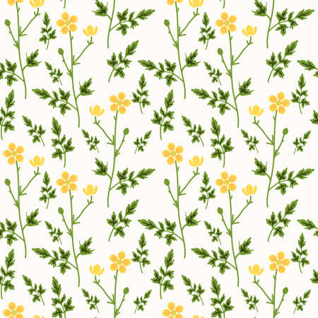 buttercup  decorative: Seamless pattern with decorative flowers