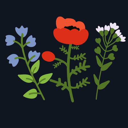 campanula: Bellflower, poppy and pennycress illustration Illustration