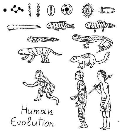 human evolution: Evolution from atom to human illustration