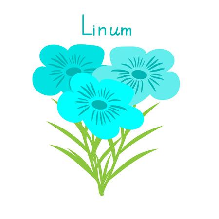 bunch: Flax flowers bunch vector illustration Illustration