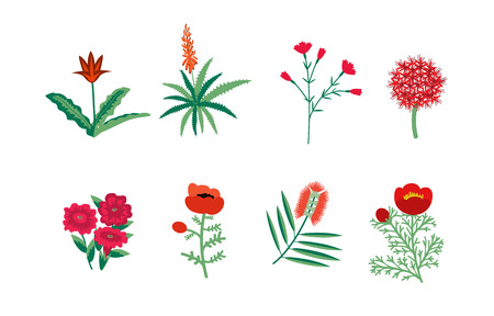 Decorative red flowers vector collection