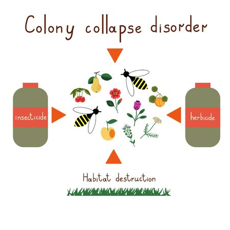 Colony collapse disorder vector illustration Çizim