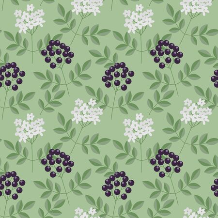 Seamless elderberry berries and flowers pattern