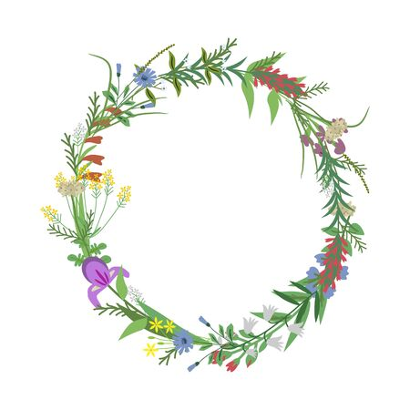 Floral vector wreath with wild gerbs
