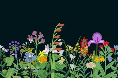 Wild flowers summer vector background