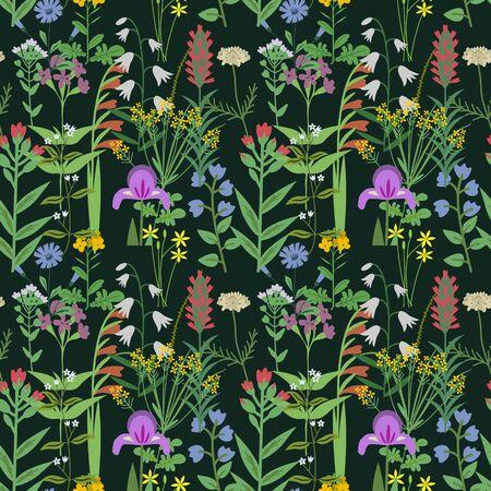 Wild herbs seamless vector pattern