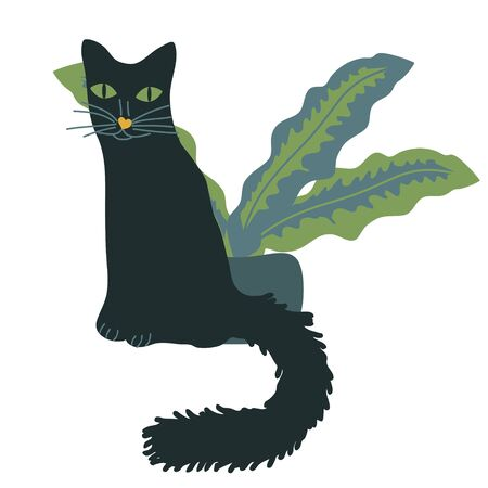 Black cat and home plant illustration