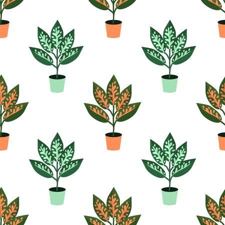 Seamless aglaonema house plant pattern
