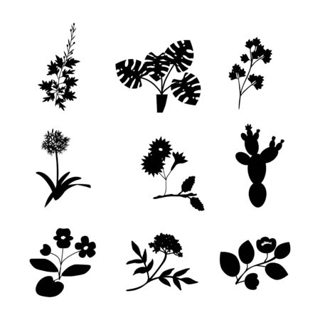 Vector flowers isolated icons collection Illustration