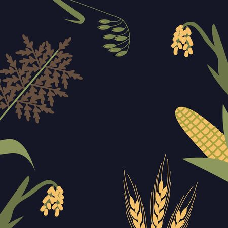 Cereal plants background vector illustration