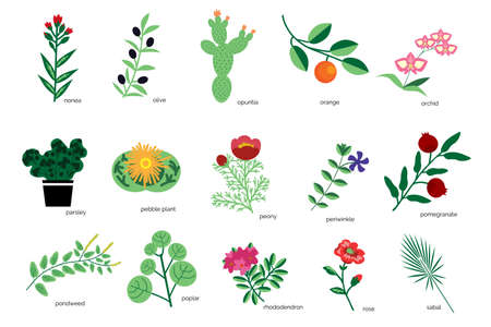 Isolated plants simple icons collection Ilustração