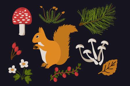 Squirrel and forest elements vector set Ilustração
