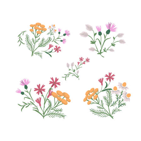 Decorative simple wild flowers collection