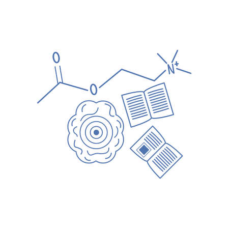 Acetylcholine molecule and learinig vector illustration