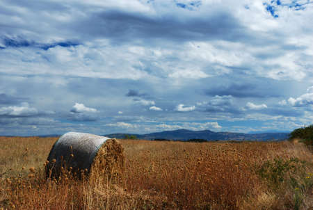 Hay bale in a golden dry field under dramatic sky                                  photo