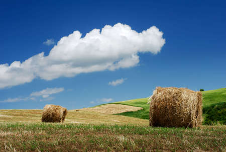 Hay bales over the hillside under blue sky photo
