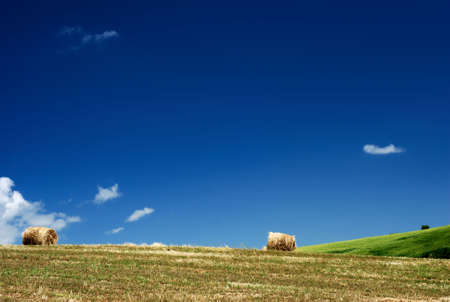 Summertime field with 2 hay bales photo