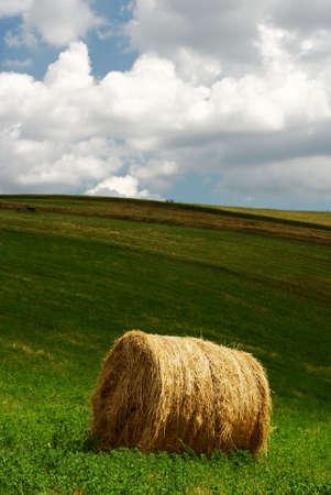 Single hay bale in a green field under grey stormy sky photo