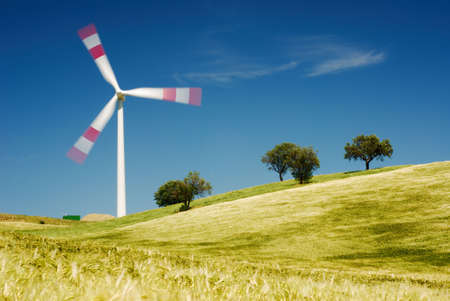 Solitary moving wind turbine with golden wheat field and trees