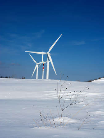 Dry grass and snow with wind turbines on background (selective focus on foreground) Stock Photo - 6150935