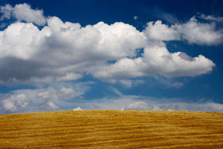 Hillside covered in golden straw lines and moody blue sky
