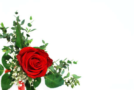 Red rose arrangement with green leaves photographed on white background (selective focus on rose top) photo