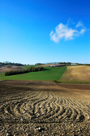 molise: Agricultural landscape from Molise with plowed fields