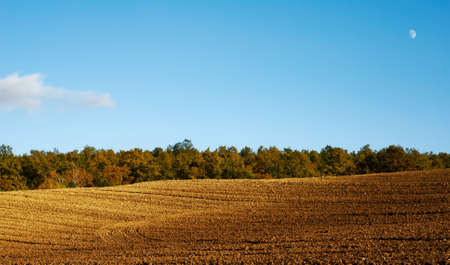 Empty rural landscape with plowed land and line of autumnal trees in background Stock Photo