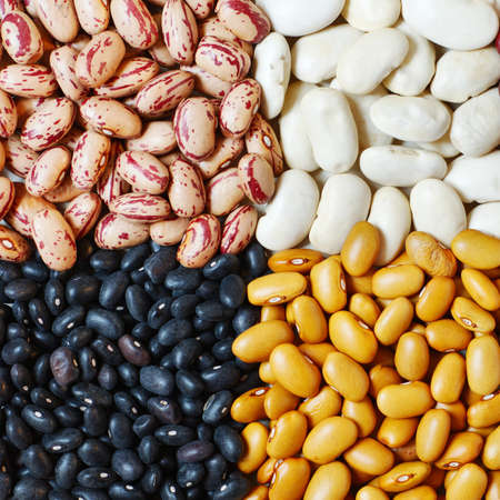 Mixture of four different type of colors of beans