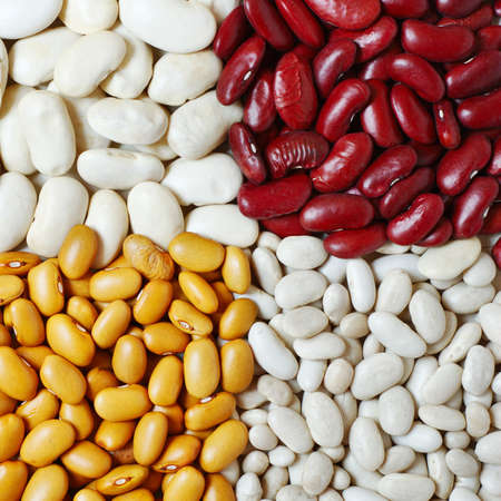 Mixture of four different types and colors of beans photo