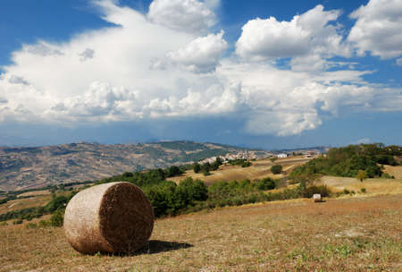 molise: Summer landscape with little village of Montagano in Molise a region of center Italy