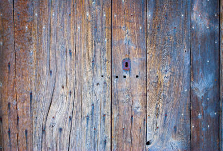 treated board: Old wooden door and nails