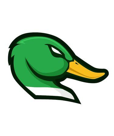 Mallard duck head cartoon vector