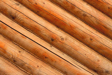 wood grain hardwood background photo