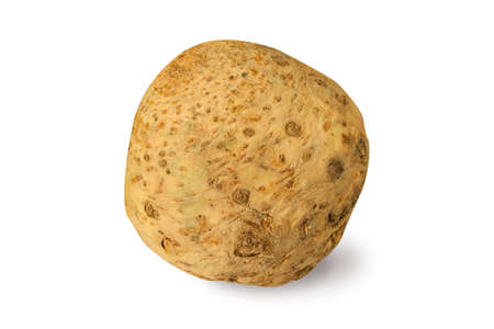 celery root: Celery root isolated on a white