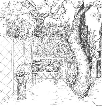 drawing trees: Black and white hand drawn vector sketch with cute outdoor territory . Summer sunny patio in art doodle style pen. Illustration