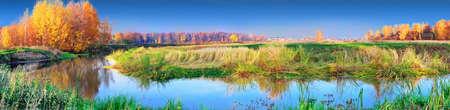 automne paysage avec des arbres jaunes sur la côte de la rivière panoramique