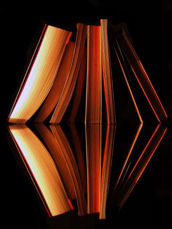 imposible bookcase with books reflexion