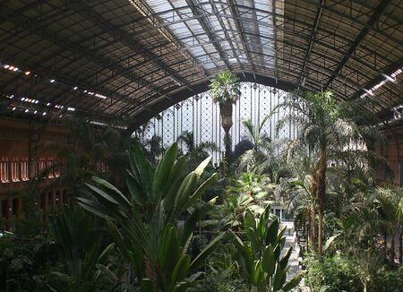 nature room in Atocha train station. Madrid (Spain) Stock Photo