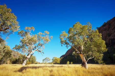 Krajina obraz krásné australském vnitrozemí.